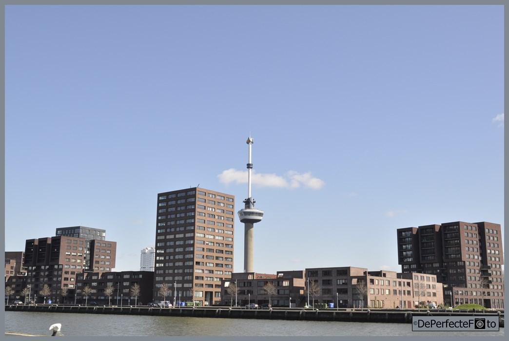 rotterdam_architectuur_stc_0021 (Kopie)
