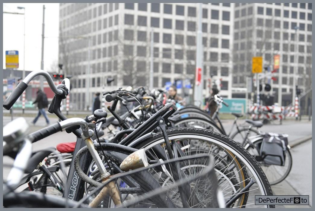 rotterdam_fietsen_marconiplein_0015 (Kopie)